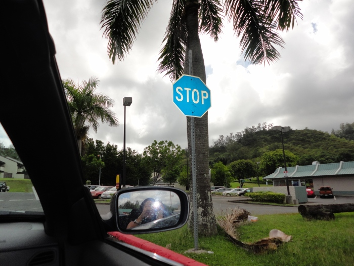 who knew stop signs could be blue?