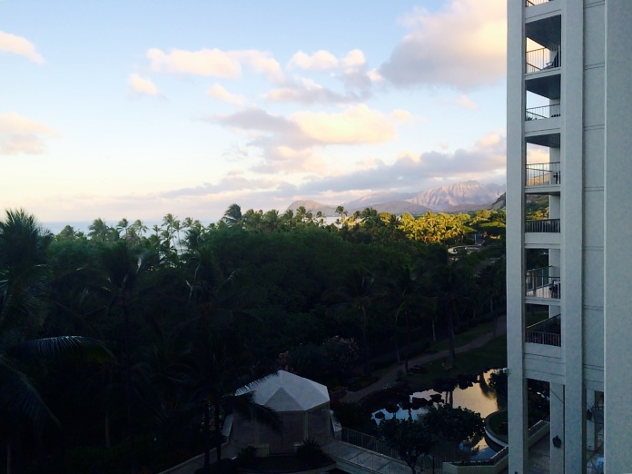 view from my lanai...