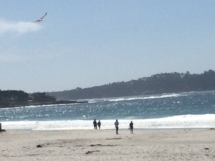 i was at the beach! - carmel by the sea | photo taken by passports & visa